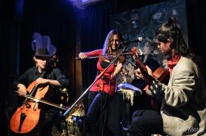 Wild Strings Trio foto Jure Matoz 10